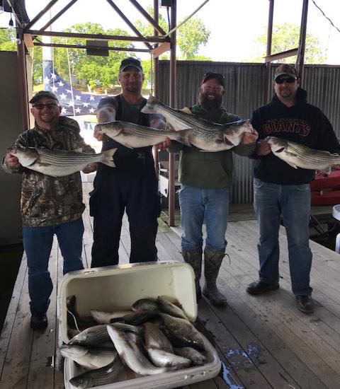 Freshwater Striper Fishing at Lake Texoma
